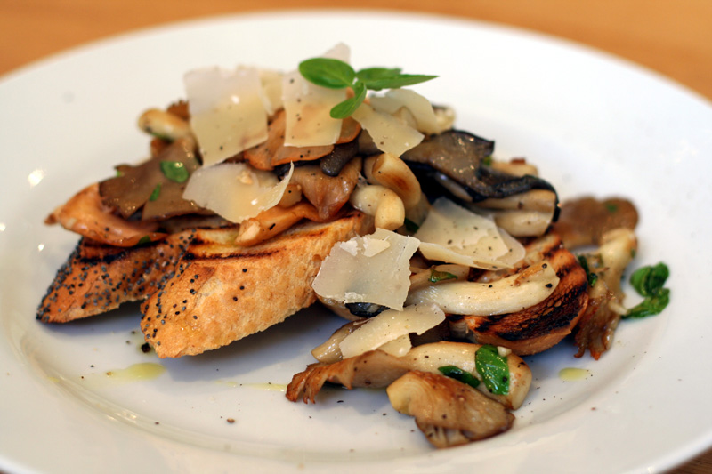 Oyster Mushroom with Basil and Parmesan on Toast